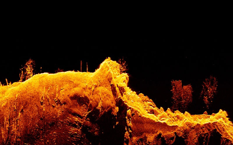Element - HyperVision Down Screen Capture   Marine Electronics by Raymarine