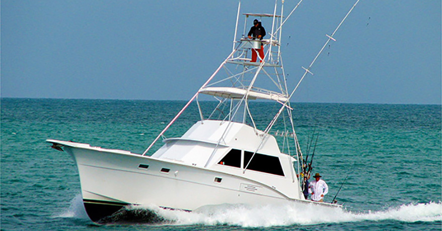 Step Up for Sailfish Tactics